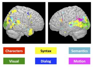 Neural activity by brain region, from Wehbe et al. (2014).